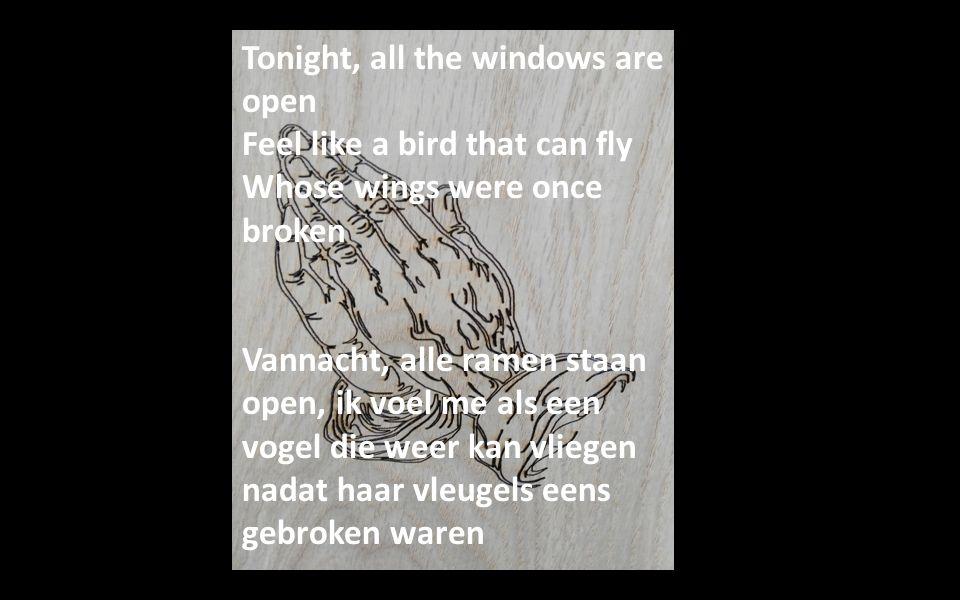 Tonight, all the windows are open Feel like a bird that can fly Whose wings were once broken Vannacht, alle ramen staan open, ik voel me als een vogel die weer kan vliegen nadat haar vleugels eens gebroken waren