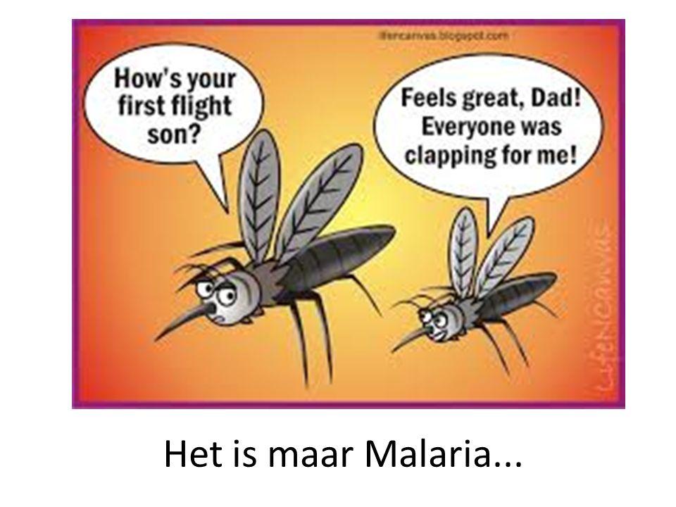 Het is maar Malaria...