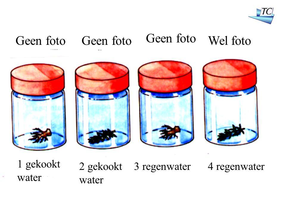 1 gekookt water 2 gekookt water 3 regenwater4 regenwater Geen foto Wel foto