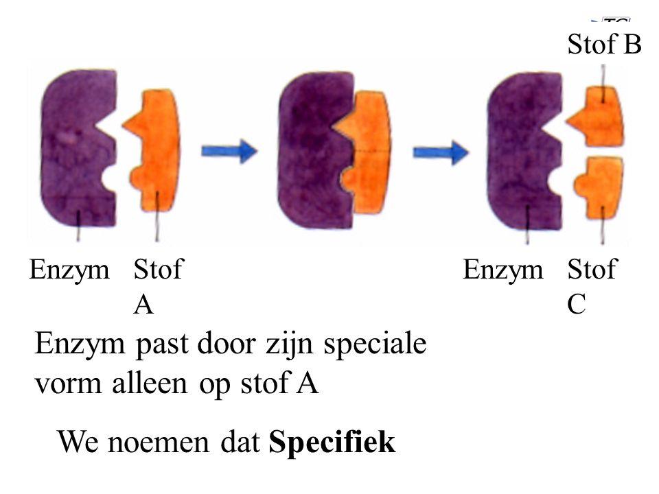 EnzymStof A Enzym past door zijn speciale vorm alleen op stof A Enzym Stof B Stof C We noemen dat Specifiek