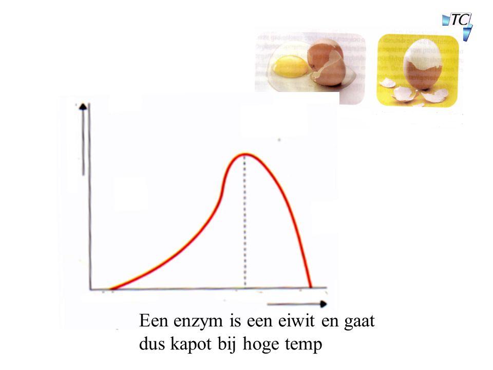 Een enzym is een eiwit en gaat dus kapot bij hoge temp