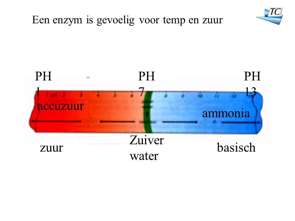 zuurbasisch accuzuur ammonia Zuiver water PH 1 PH 7 PH 13 Een enzym is gevoelig voor temp en zuur