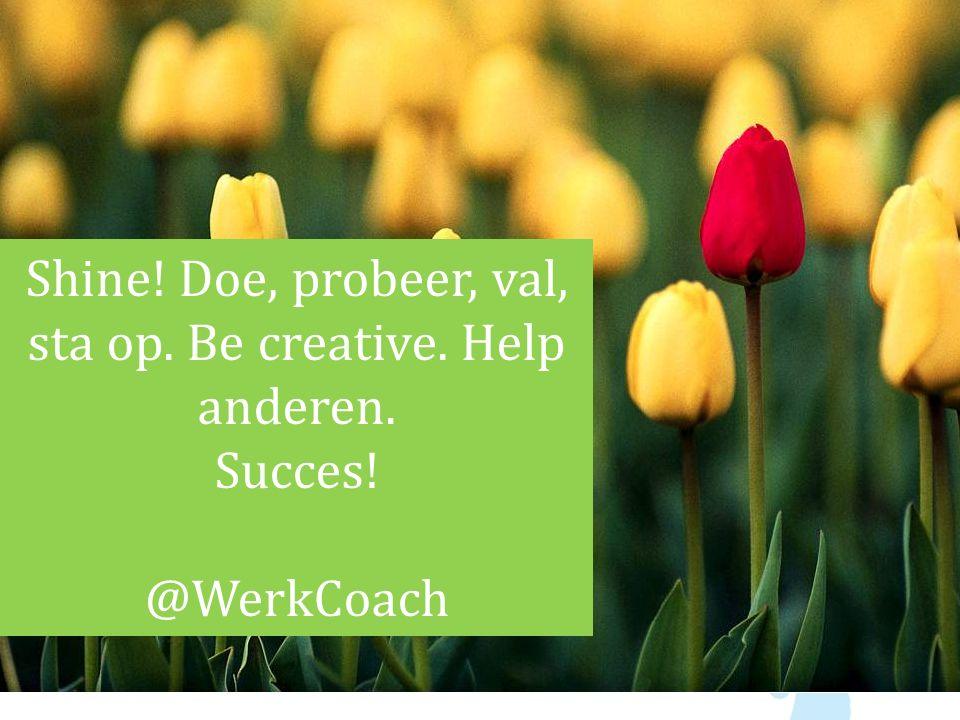 Shine! Doe, probeer, val, sta op. Be creative. Help anderen. Succes! @WerkCoach