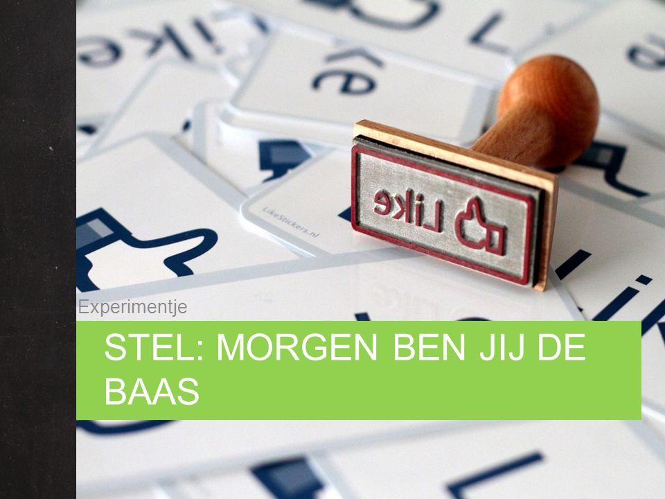 STEL: MORGEN BEN JIJ DE BAAS Experimentje
