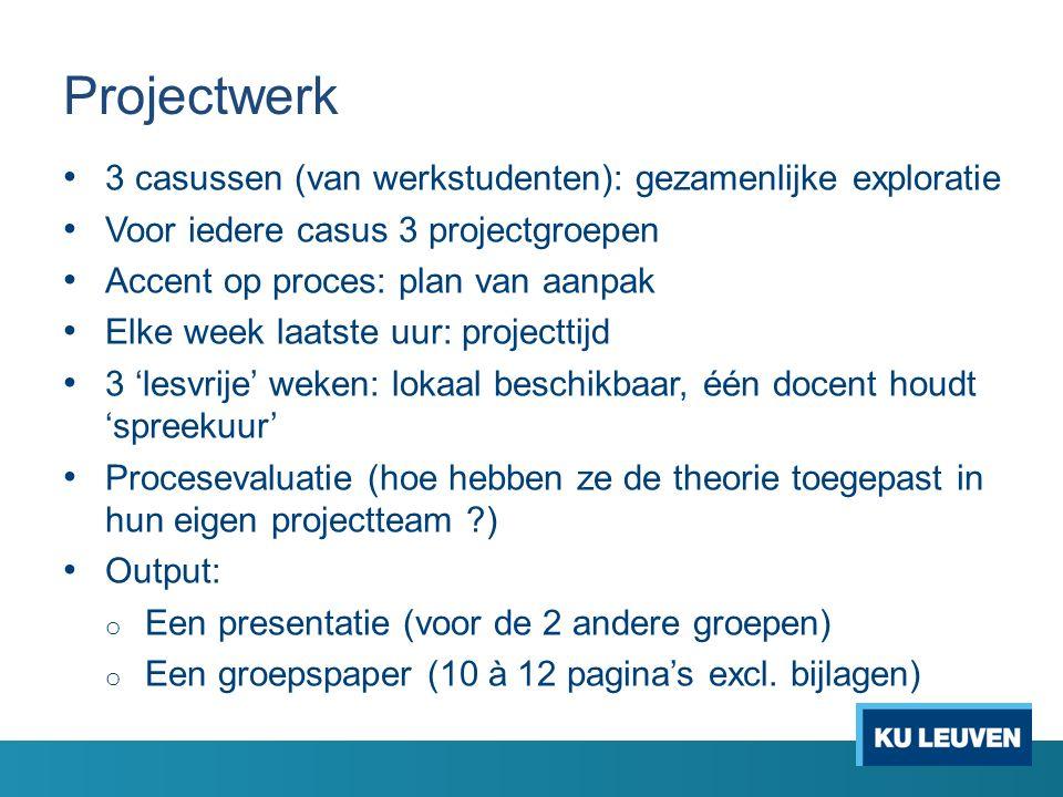 Projectwerk 3 casussen (van werkstudenten): gezamenlijke exploratie Voor iedere casus 3 projectgroepen Accent op proces: plan van aanpak Elke week laa