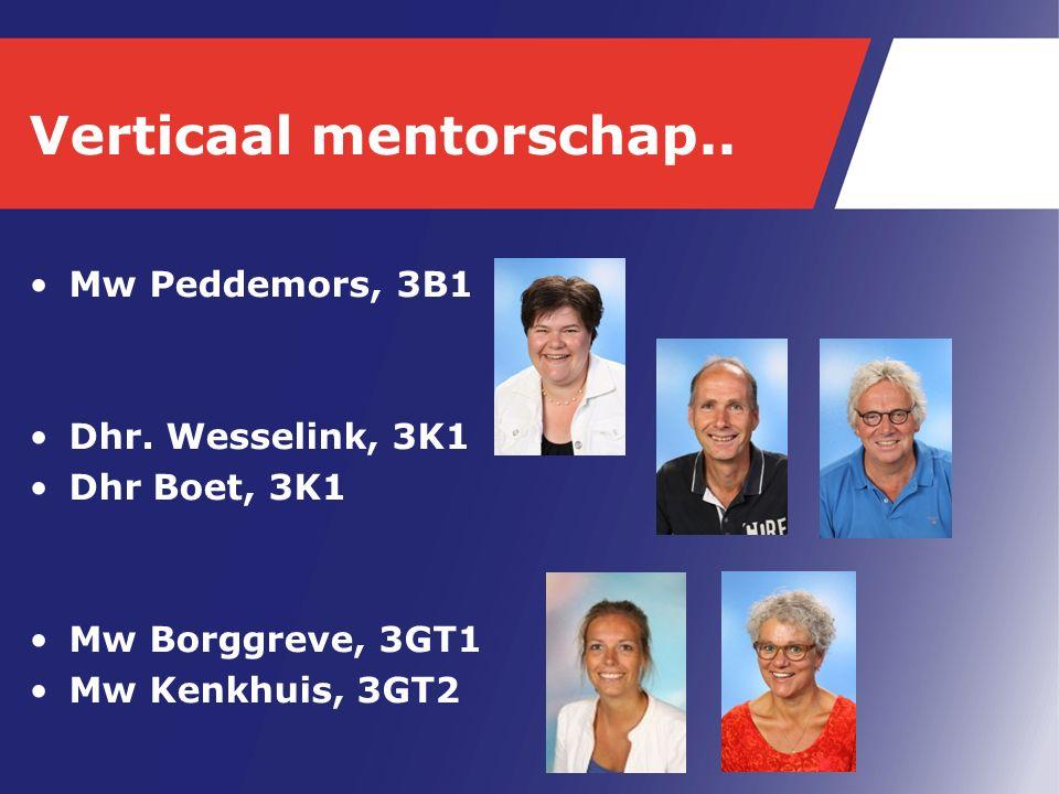 Verticaal mentorschap.. Mw Peddemors, 3B1 Dhr. Wesselink, 3K1 Dhr Boet, 3K1 Mw Borggreve, 3GT1 Mw Kenkhuis, 3GT2