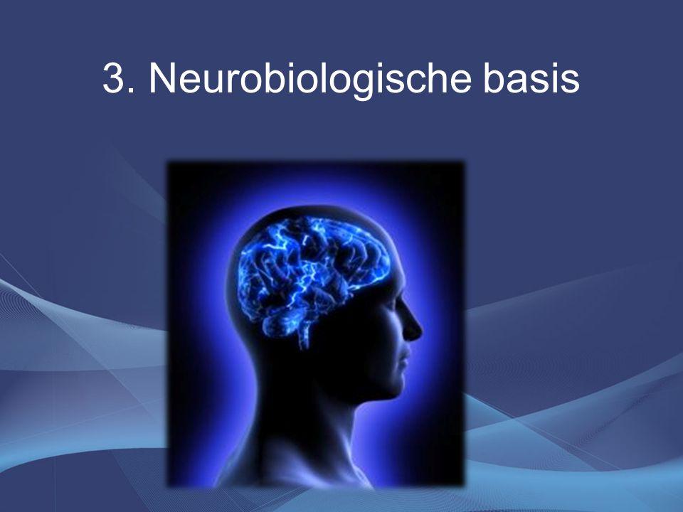 3. Neurobiologische basis
