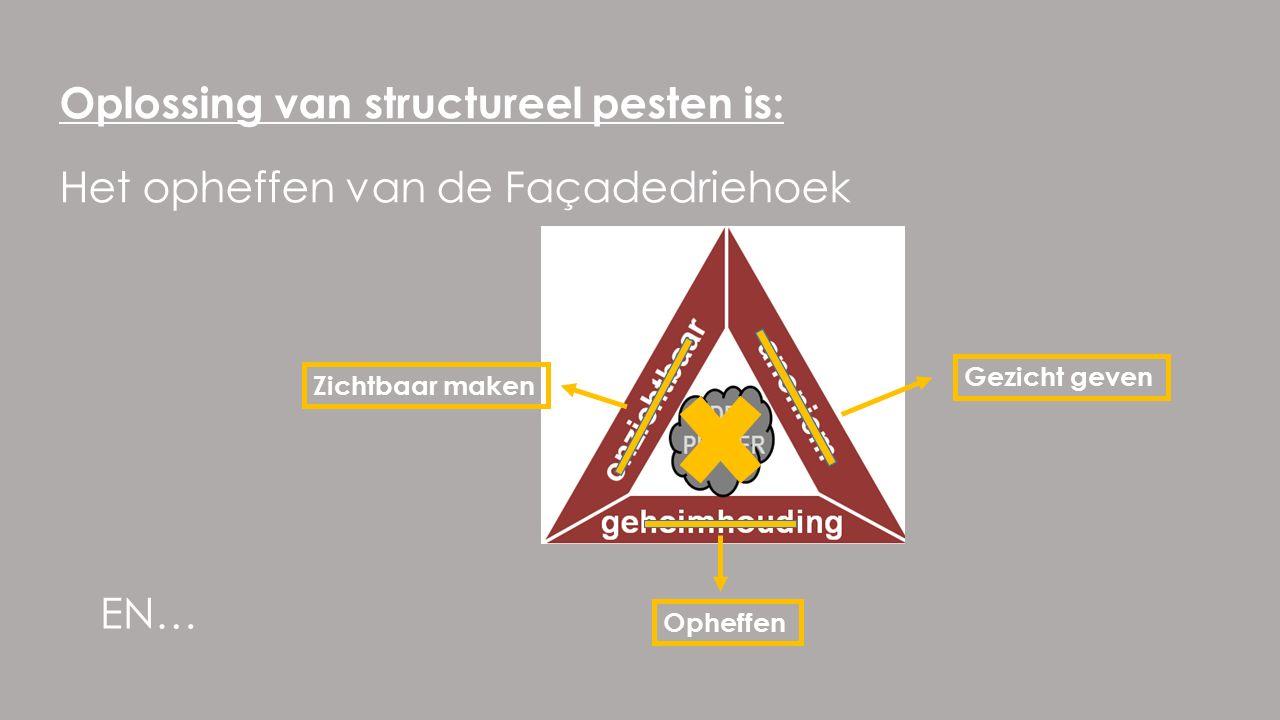 Het opheffen van de Façadedriehoek Oplossing van structureel pesten is: Zichtbaar maken Gezicht geven Opheffen EN…