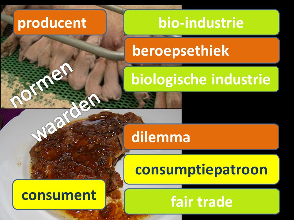 producent consument consumptiepatroon beroepsethiek bio-industrie biologische industrie dilemma fair trade