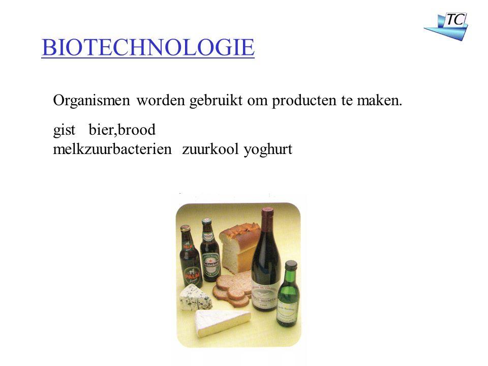 Organismen worden gebruikt om producten te maken. gist bier,brood melkzuurbacterien zuurkool yoghurt BIOTECHNOLOGIE