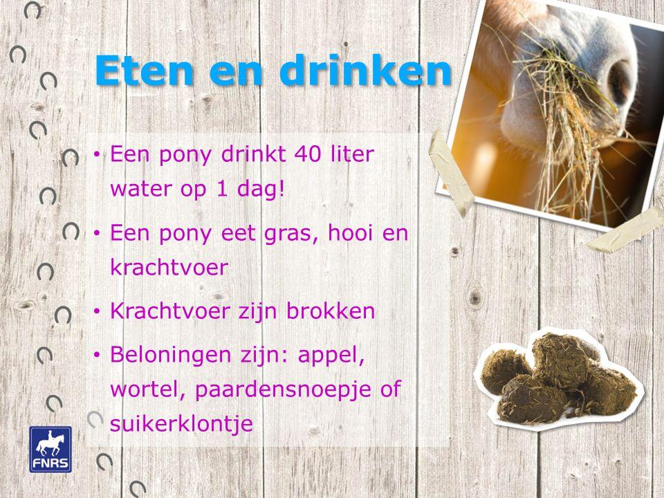 Eten en drinken Een pony drinkt 40 liter water op 1 dag.