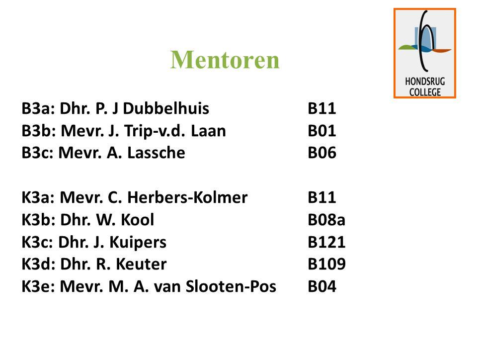 Mentoren B3a: Dhr. P. J DubbelhuisB11 B3b: Mevr.