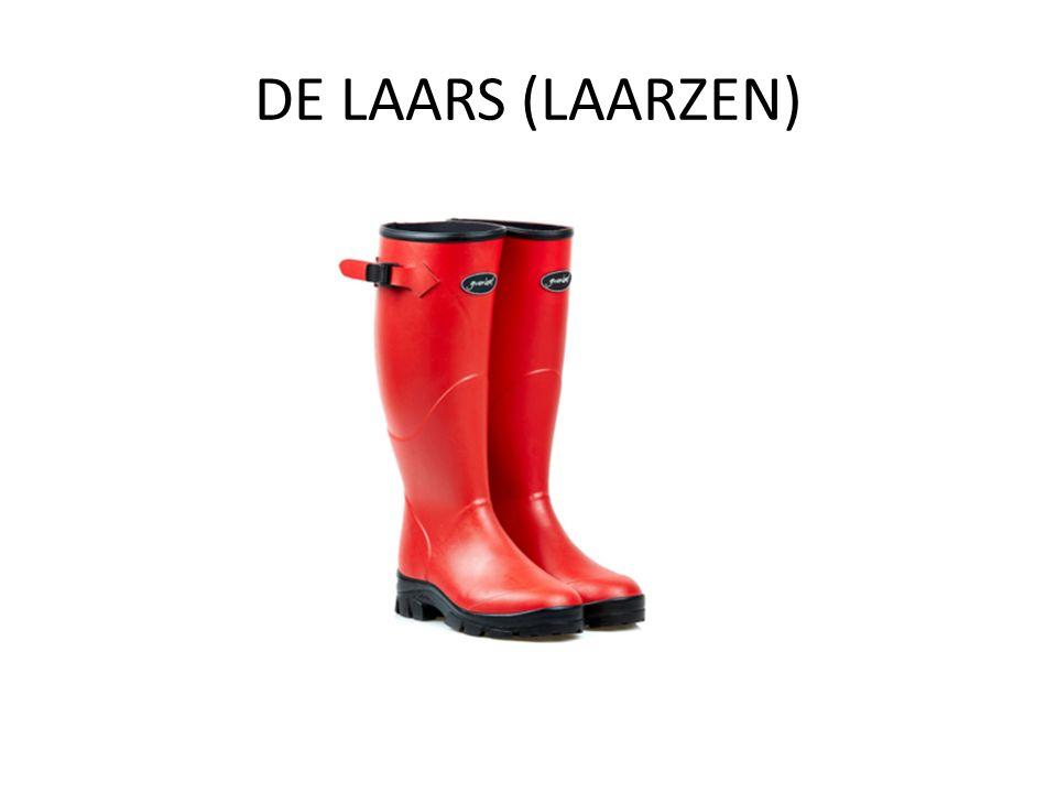 DE LAARS (LAARZEN)