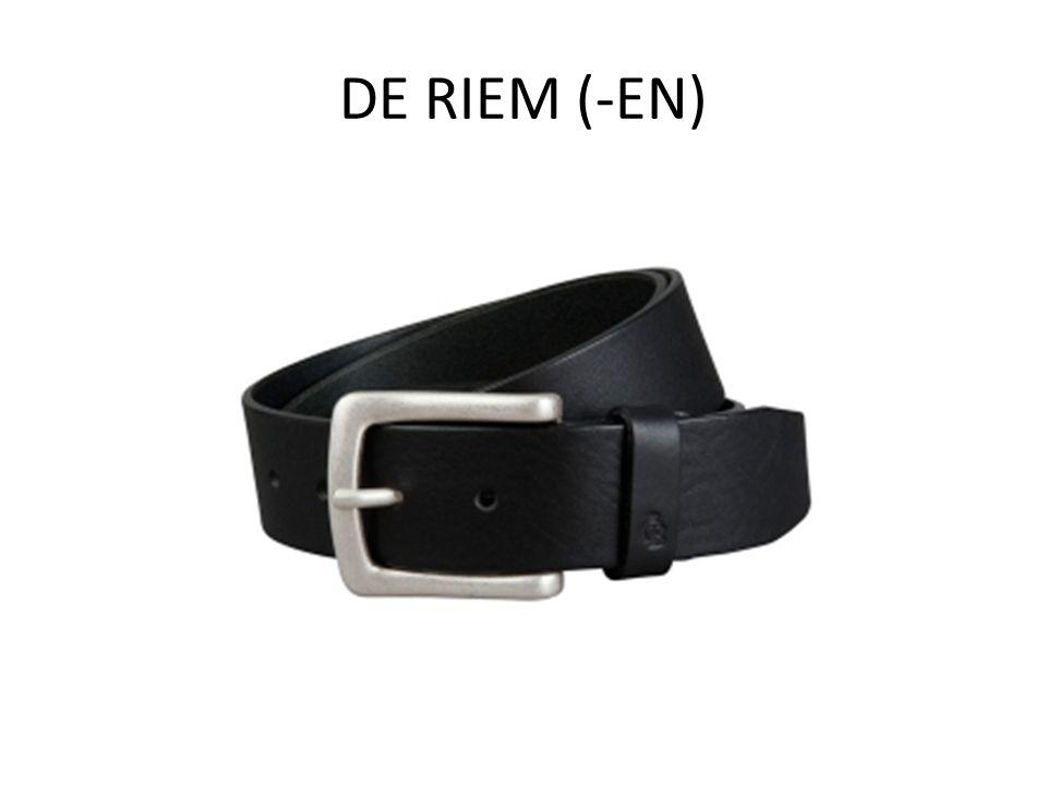 DE RIEM (-EN)