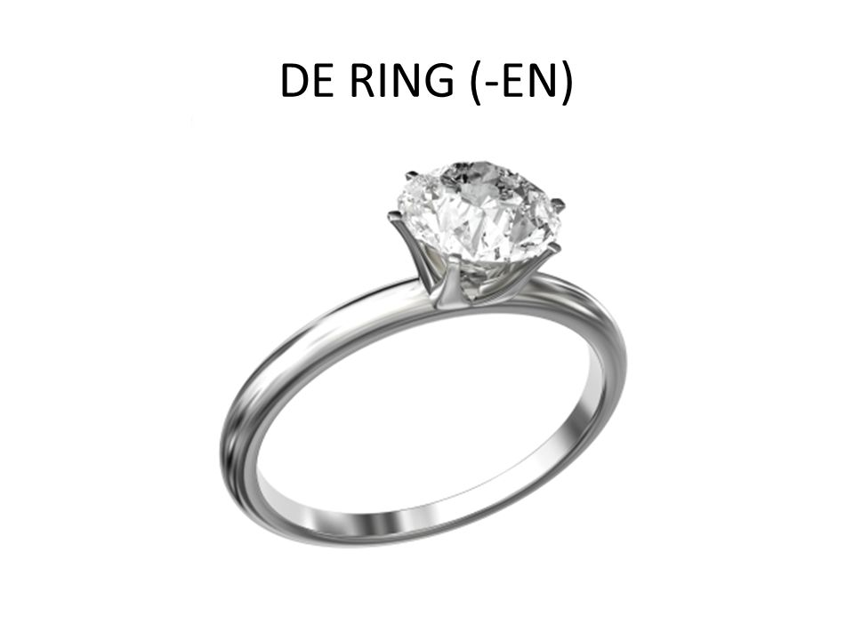 DE RING (-EN)