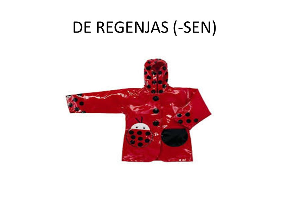 DE REGENJAS (-SEN)