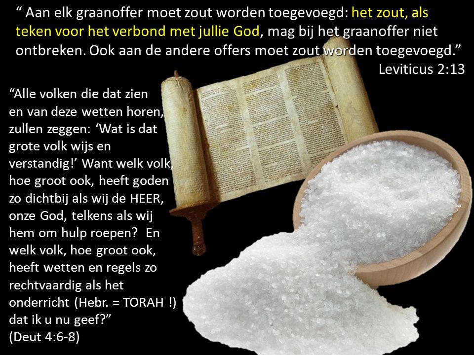 Aan elk graanoffer moet zout worden toegevoegd: het zout, als teken voor het verbond met jullie God, mag bij het graanoffer niet ontbreken.