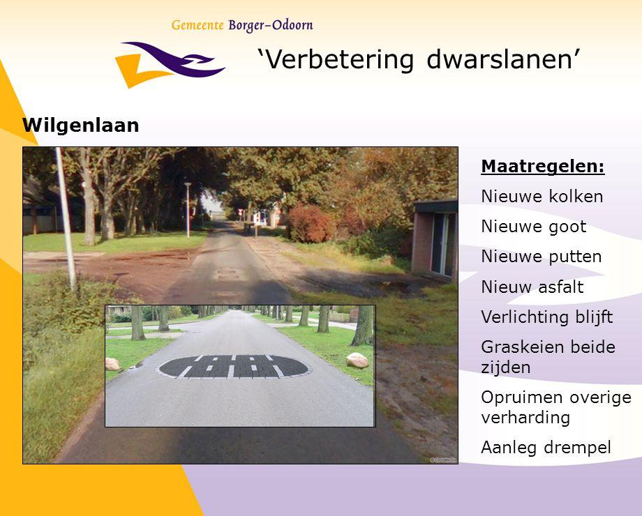 'Verbetering dwarslanen' Wilgenlaan Maatregelen: Nieuwe kolken Nieuwe goot Nieuwe putten Nieuw asfalt Verlichting blijft Graskeien beide zijden Opruim