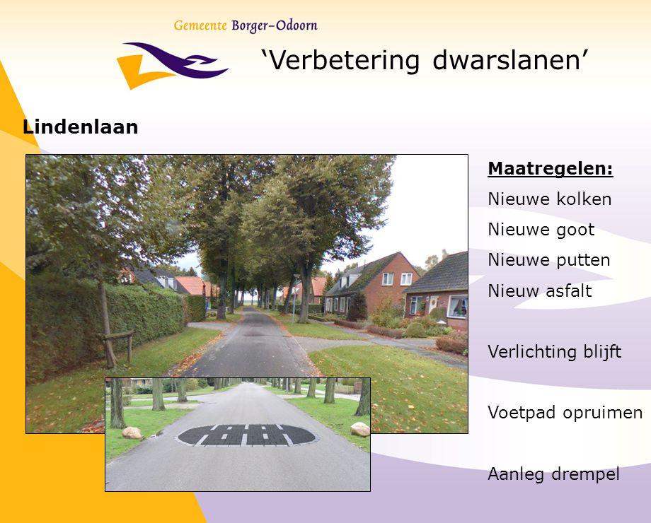 'Verbetering dwarslanen' Lindenlaan Maatregelen: Nieuwe kolken Nieuwe goot Nieuwe putten Nieuw asfalt Verlichting blijft Voetpad opruimen Aanleg dremp