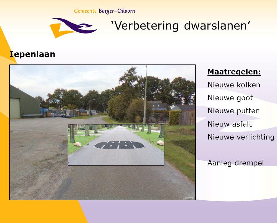 'Verbetering dwarslanen' Iepenlaan Maatregelen: Nieuwe kolken Nieuwe goot Nieuwe putten Nieuw asfalt Nieuwe verlichting Aanleg drempel