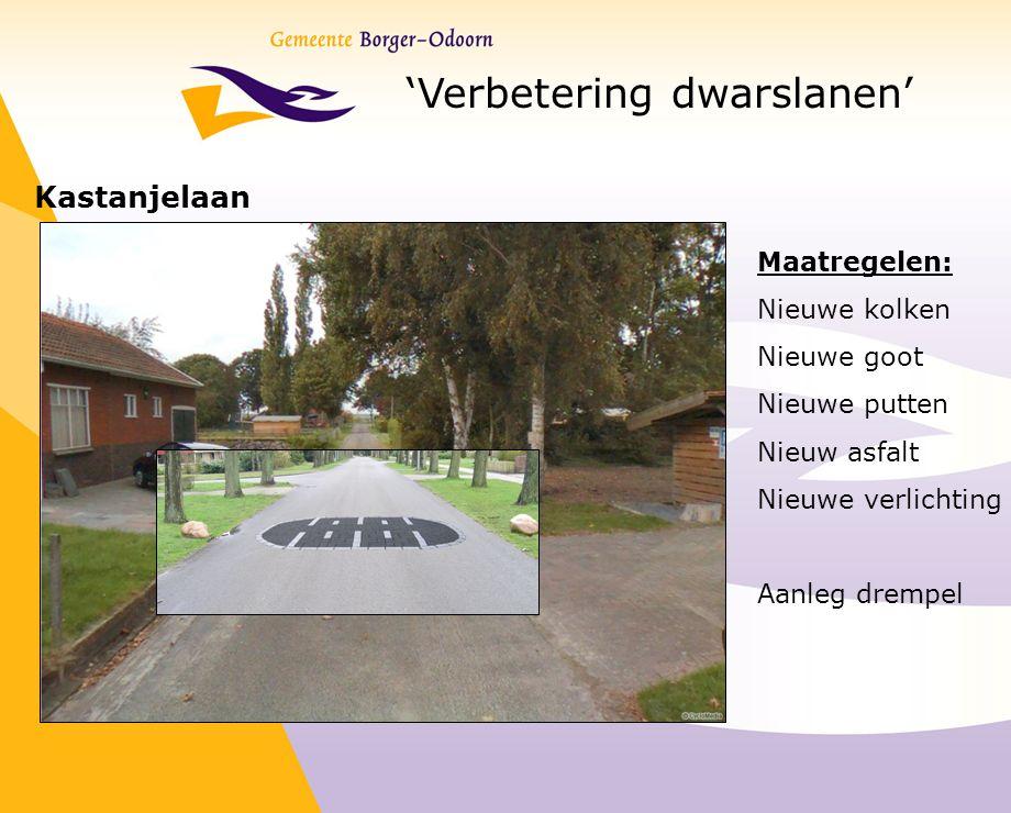 'Verbetering dwarslanen' Kastanjelaan Maatregelen: Nieuwe kolken Nieuwe goot Nieuwe putten Nieuw asfalt Nieuwe verlichting Aanleg drempel