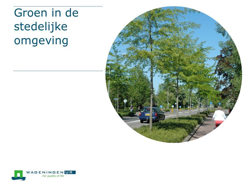 Groen in de stedelijke omgeving