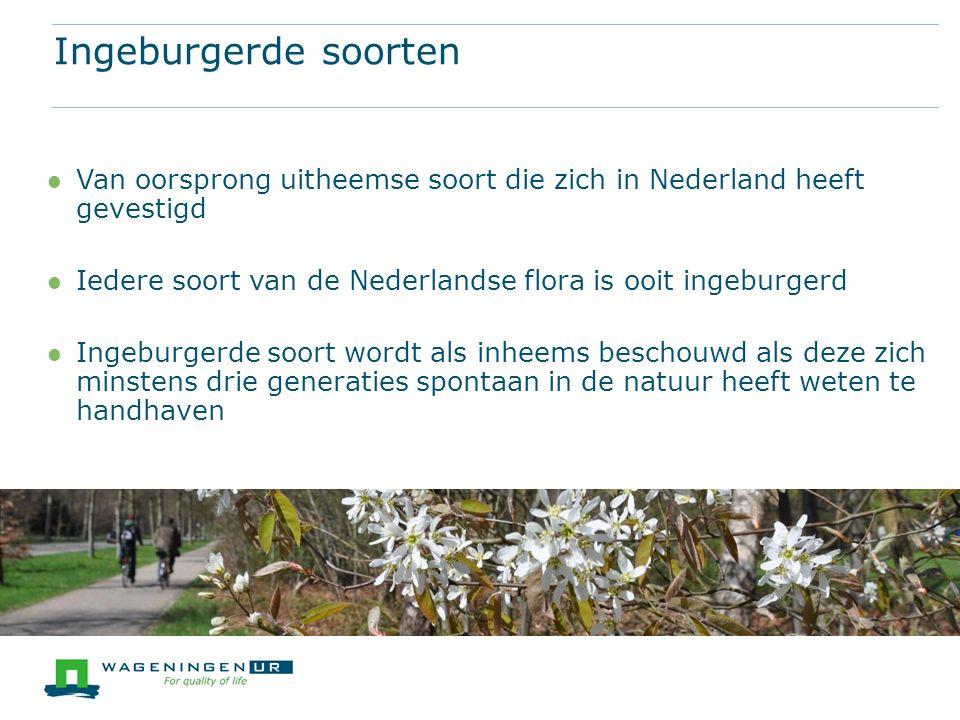 Van oorsprong uitheemse soort die zich in Nederland heeft gevestigd Iedere soort van de Nederlandse flora is ooit ingeburgerd Ingeburgerde soort wordt als inheems beschouwd als deze zich minstens drie generaties spontaan in de natuur heeft weten te handhaven Ingeburgerde soorten