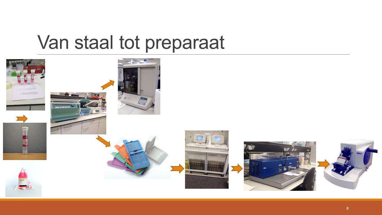 Inhoudsopgave  Inleiding  Literatuurstudie  Van staal tot preparaat  Technieken/methodes  Resultaten en discussie  Conclusie  Toekomstperspectief 9