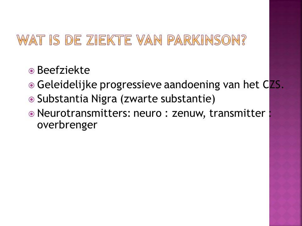 Beefziekte  Geleidelijke progressieve aandoening van het CZS.