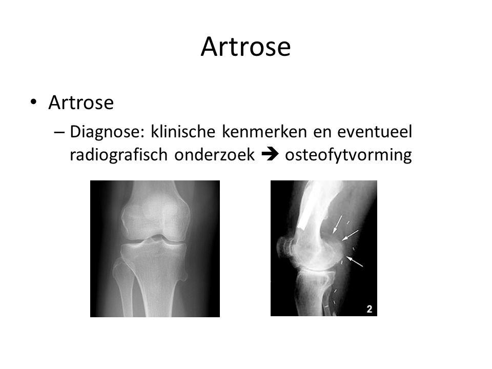 Artrose – Diagnose: klinische kenmerken en eventueel radiografisch onderzoek  osteofytvorming