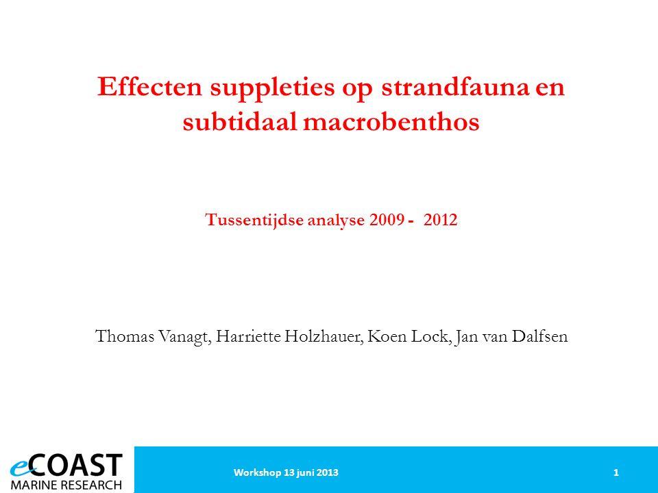22Workshop 13 juni 2013 Subtidale macrofauna: temporele patronen - jaar