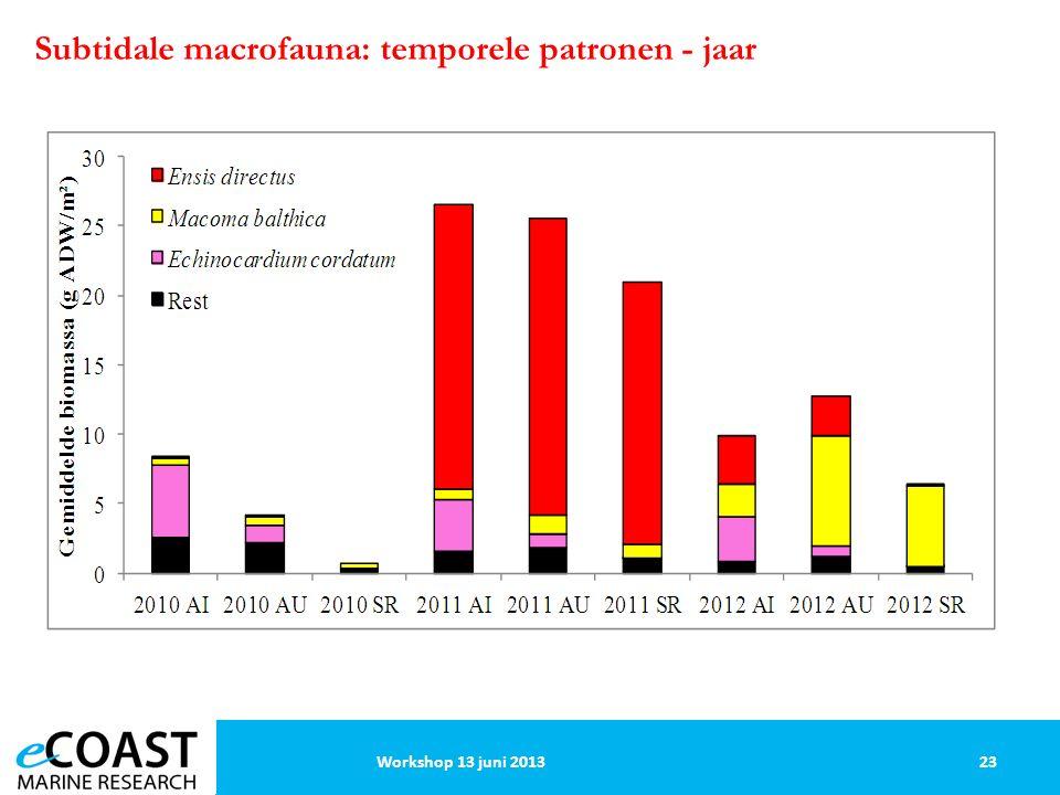 23Workshop 13 juni 2013 Subtidale macrofauna: temporele patronen - jaar