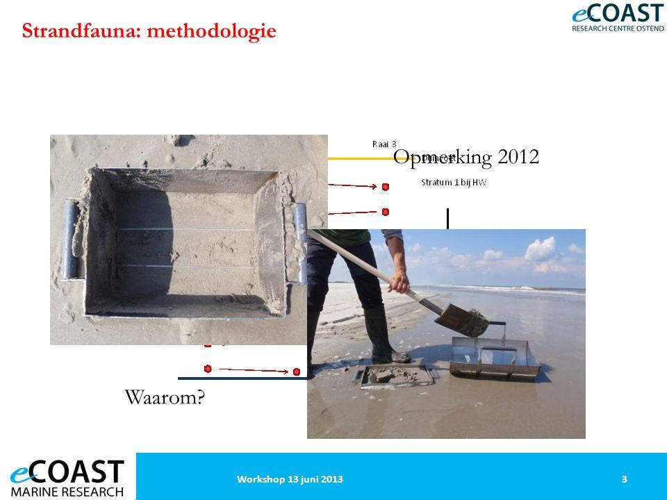 Strandfauna: methodologie 3Workshop 13 juni 2013 Opmerking 2012 Waarom