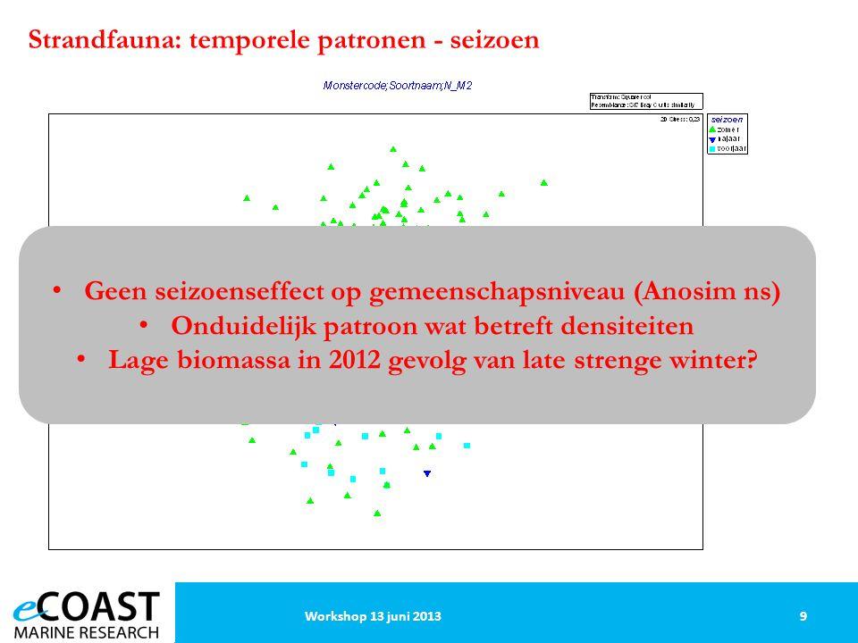 Strandfauna: temporele patronen - seizoen 9Workshop 13 juni 2013 Geen seizoenseffect op gemeenschapsniveau (Anosim ns) Onduidelijk patroon wat betreft densiteiten Lage biomassa in 2012 gevolg van late strenge winter