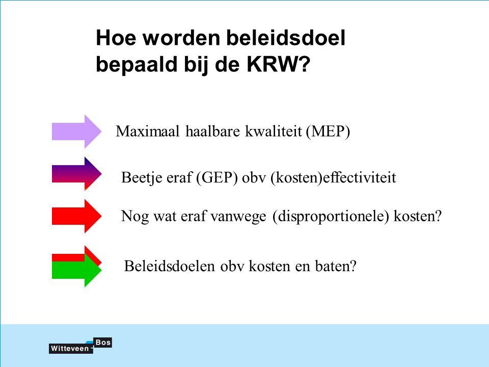 Hoe worden beleidsdoel bepaald bij de KRW.