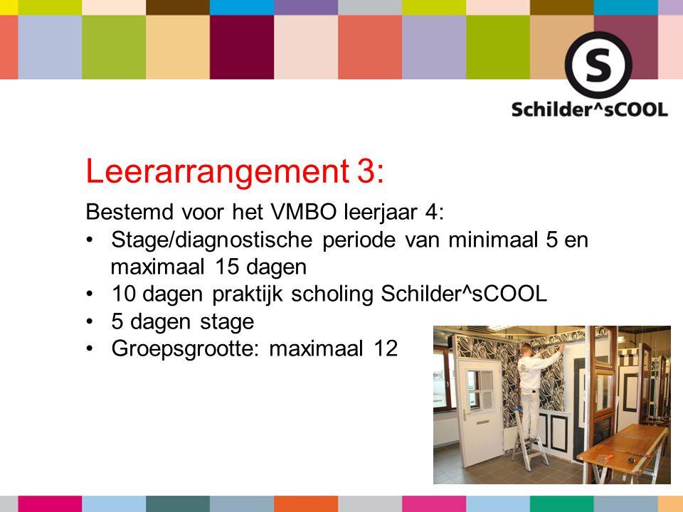 Bestemd voor het VMBO leerjaar 4: Stage/diagnostische periode van minimaal 5 en maximaal 15 dagen 10 dagen praktijk scholing Schilder^sCOOL 5 dagen st