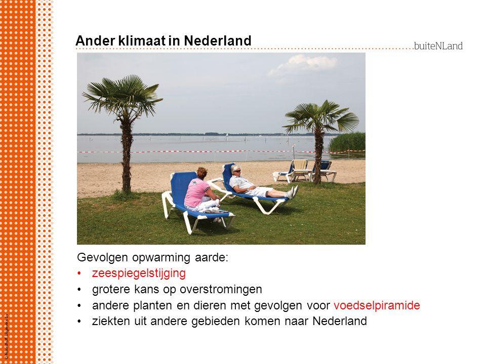 Ander klimaat in Nederland Gevolgen opwarming aarde: zeespiegelstijging grotere kans op overstromingen andere planten en dieren met gevolgen voor voed