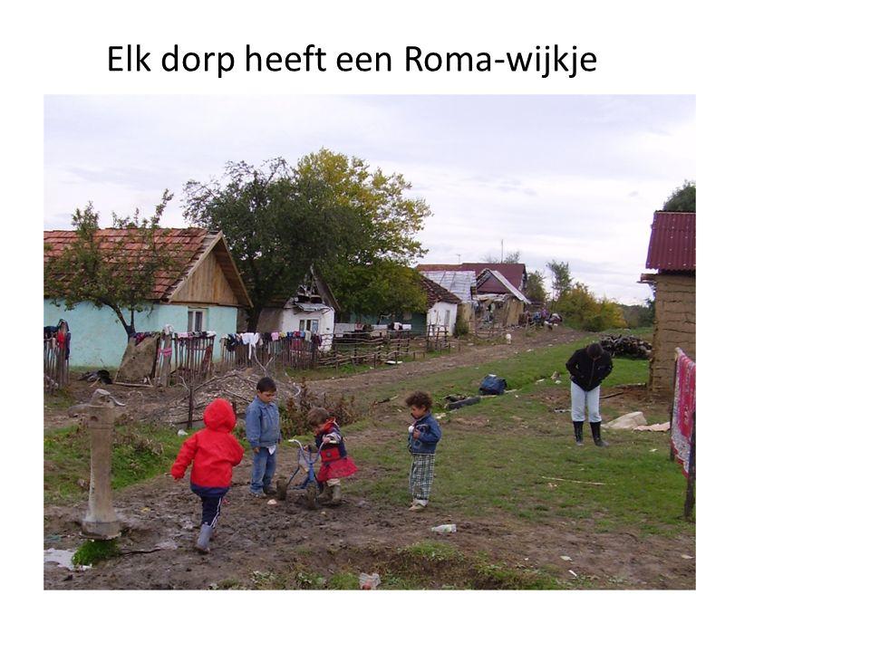 Elk dorp heeft een Roma-wijkje