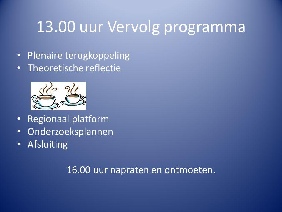 13.00 uur Vervolg programma Plenaire terugkoppeling Theoretische reflectie Regionaal platform Onderzoeksplannen Afsluiting 16.00 uur napraten en ontmoeten.