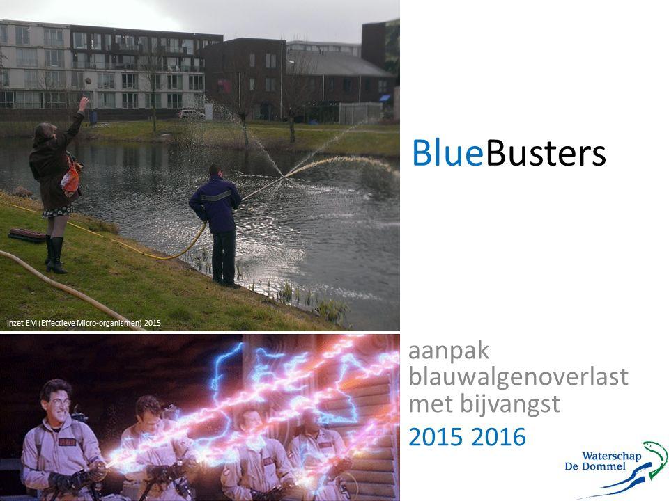 aanpak blauwalgenoverlast met bijvangst 2015 2016 BlueBusters Inzet EM (Effectieve Micro-organismen) 2015