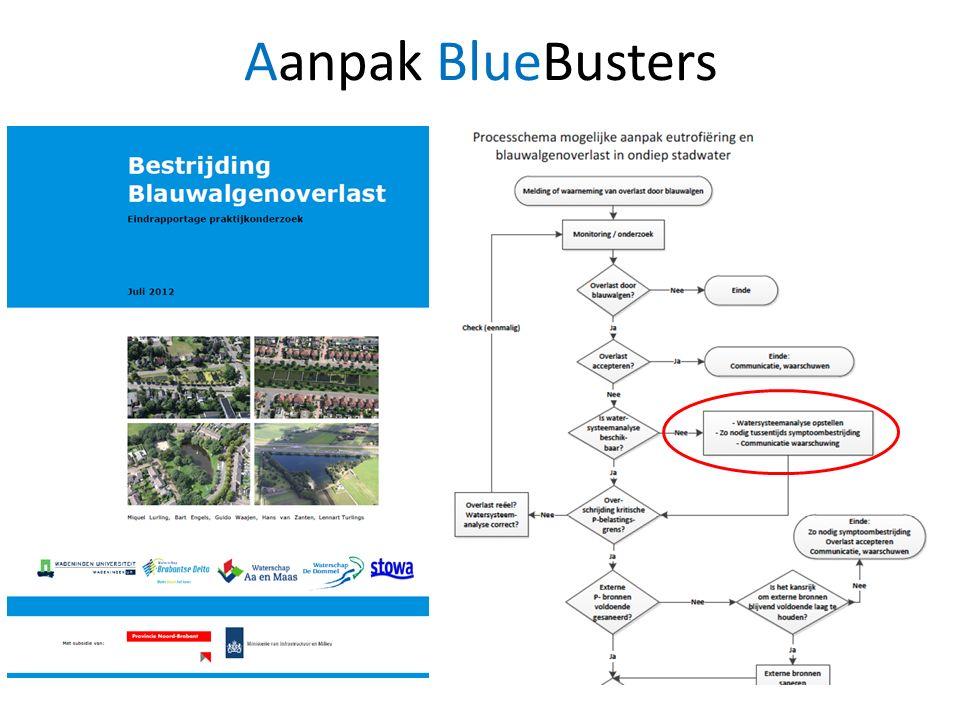 Aanpak BlueBusters