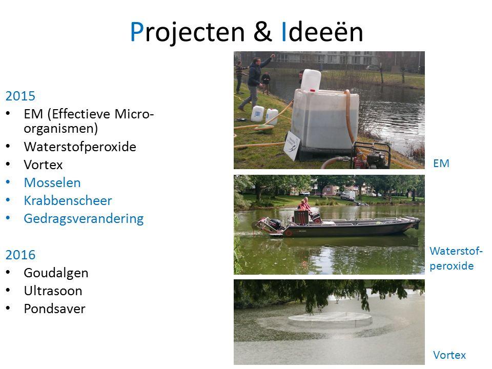 Projecten & Ideeën 2015 EM (Effectieve Micro- organismen) Waterstofperoxide Vortex Mosselen Krabbenscheer Gedragsverandering 2016 Goudalgen Ultrasoon Pondsaver EM Waterstof- peroxide Vortex