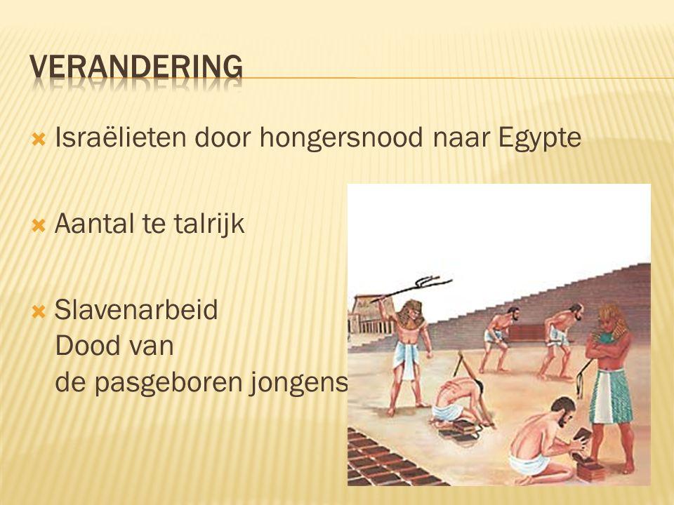  Israëlieten door hongersnood naar Egypte  Aantal te talrijk  Slavenarbeid Dood van de pasgeboren jongens