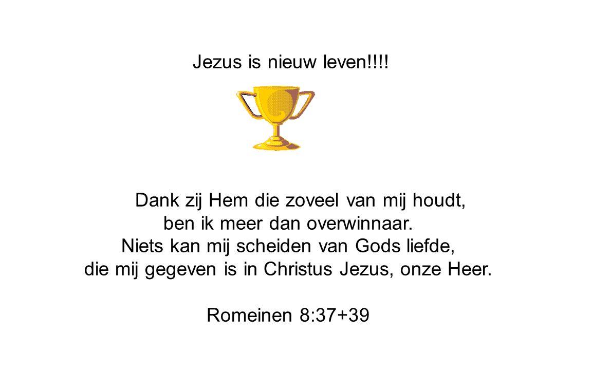 Jezus is nieuw leven!!!. Dank zij Hem die zoveel van mij houdt, ben ik meer dan overwinnaar.
