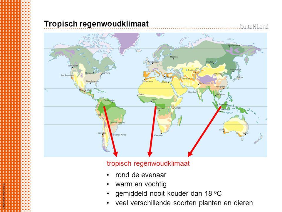 Tropisch regenwoudklimaat tropisch regenwoudklimaat rond de evenaar warm en vochtig gemiddeld nooit kouder dan 18 o C veel verschillende soorten planten en dieren