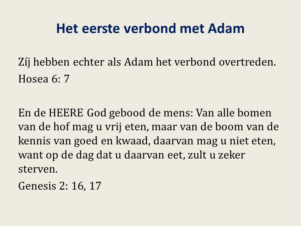 Het eerste verbond met Adam Zíj hebben echter als Adam het verbond overtreden. Hosea 6: 7 En de HEERE God gebood de mens: Van alle bomen van de hof ma