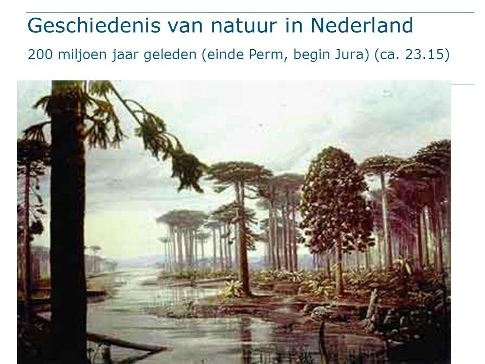 Geschiedenis van natuur in Nederland 200 miljoen jaar geleden (einde Perm, begin Jura) (ca. 23.15)