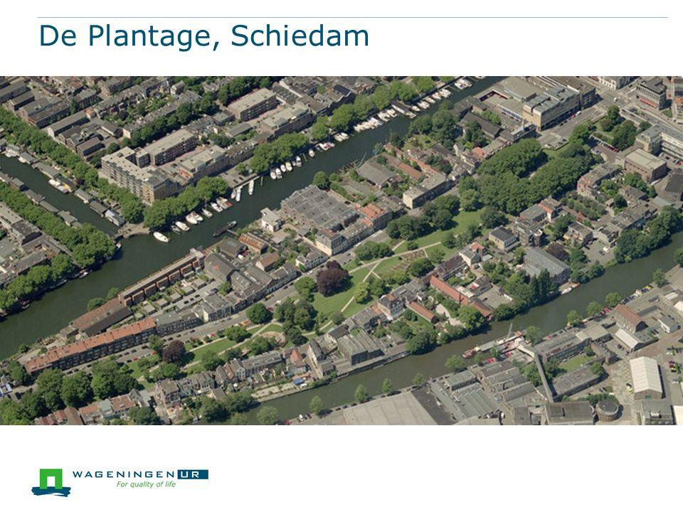 De Plantage, Schiedam