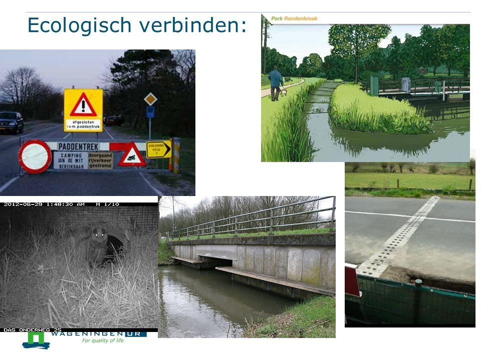 Ecologisch verbinden: