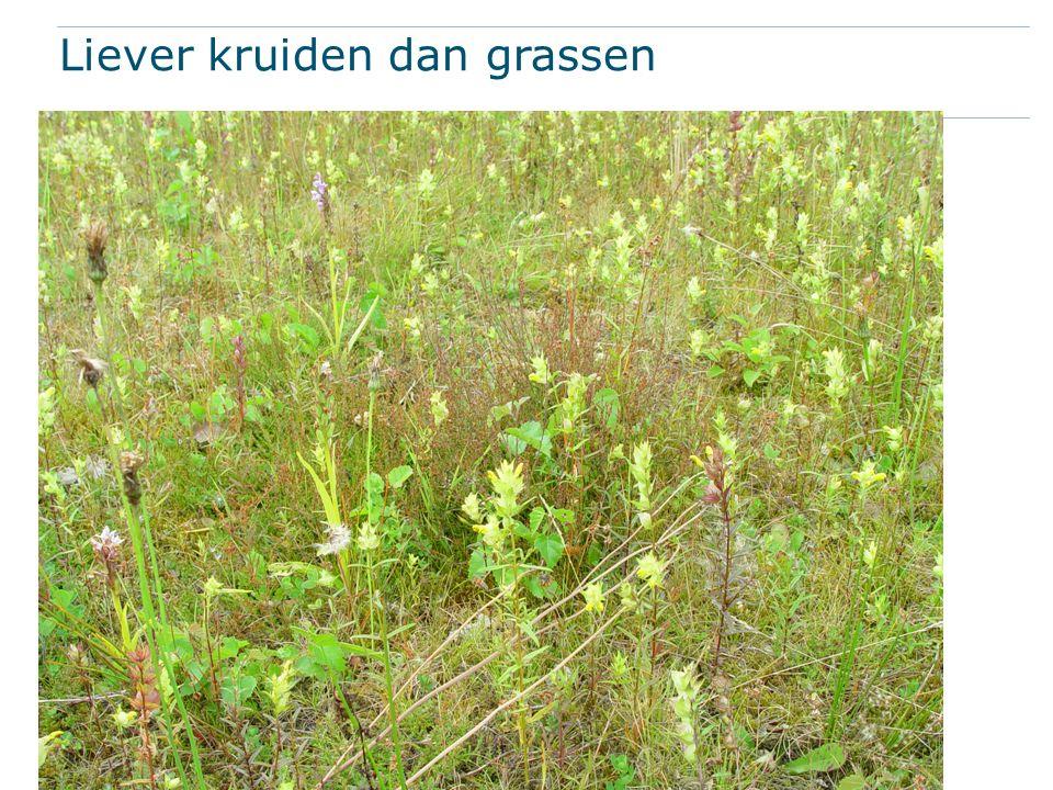 Liever kruiden dan grassen